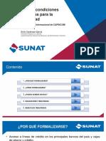 Mejores Condiciones Tributarias Para Mejorar La Informalidad SUNAT - MODULO 2