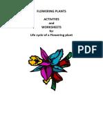 Flowering Plants worksheet