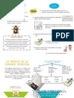 Tecnica Del Escarabajo y Piramide Invertida