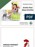 Prolanis Goat Artritis