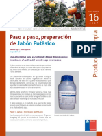 JABON-POTASICO-M.pdf