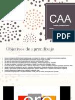 16. 23.10 CAA.pdf