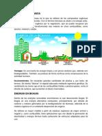 BIOMASA Y BIOGÁS.docx