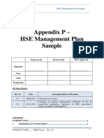 Appendix P - HSE Management Plan