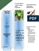 392882617-Leaflet-Rebusan-Seledri.doc