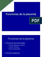 Funciones Placenta