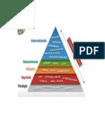 Los Elementos Del Valor-Piramide Harvard (1)