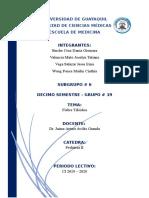 Clase 24 - Fiebre tifoidea.docx