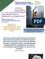 5-Foro De_Intercambio de Experiencias_Innovación Para La Justicia Juvenil y La Protección de Niñez