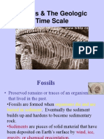 Fossils_Geo_Time.ppt