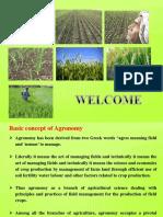 crops classification
