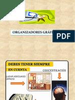ORGANIZADORES GRÁFICOS 1