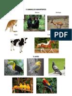 5 Animales Maniferos