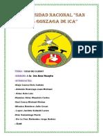Universidad-nacional-4.docx