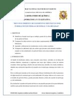 Informe Perla de Borax