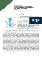 Aula 18- Texto- Bacteriófagos