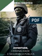 Juventude Criminalidade e Segurança Pública