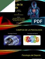DIAPOSITIVA-Campos de La Psicología.