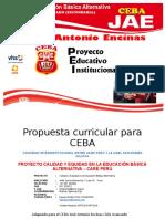 0.2. PCI_CEBA_JAE_2018.docx