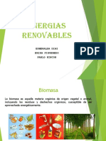 Biomasa Expo 1