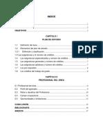 Analisis-del-plan-de-estudio-de-informatica 2.docx