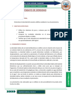DENSIDAD 1.docx