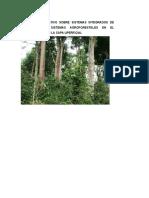 Estudio Comparativo Sobre Sistemas Integrados de Produccion y Sistemas Agroforestales en El La Cantera Municipal de Nueva Cajamarca