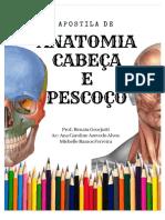 PDF Apostila Anato