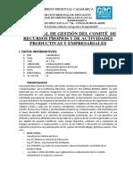 PLAN ANUAL DE GESTIÓN DEL COMITÉ DE RECURSOS.docx