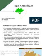 Climatologia, Geografia Do Brasil, Agrária e Meio Ambiente - Portfólio 3º Ciclo