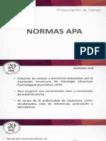 Criterios Normas APA