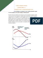 Laboratorio n 2- Funcion de Produccion y Costos de Produccion