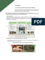 Remediacion de Impacto Ambiental