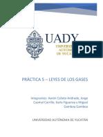 Práctica 5 de Termodinámica - Grupo D.docx
