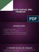 Division Racial Del Trabajo
