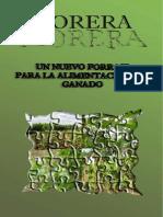 morera.pdf