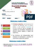 Silabo - Morfofisiología