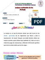 Mecanismo Meiosis Clase 8 Dr. Barón