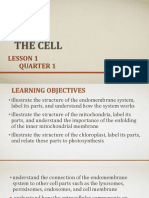 L1 Q1 The Cell
