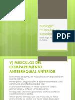 Netter Cuaderno de Anatomia Para Colorear 2da - Librosmedicina.org