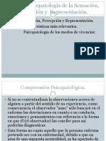 Tema 3 Psicopatología de La Sensación, Percepción y Representación