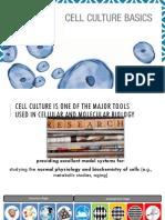 Cell Culture Basics