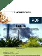 presentacion fitorremediacion