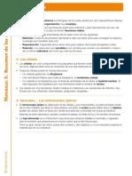 CN5 T1.pdf