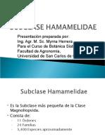 4._HAMAMELIDAE_2014