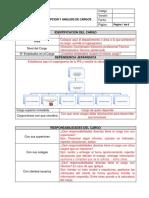 Formato Descripcion y Análisis de Cargos