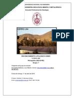 Informe Semicorregido Petrografía GE153-R2
