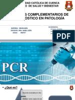 Métodos Complementarios de Diagnóstico en Oncologia