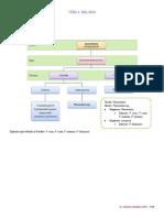 Resumen Malaria.pdf
