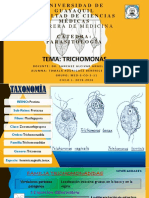 parasitologia trichomonas